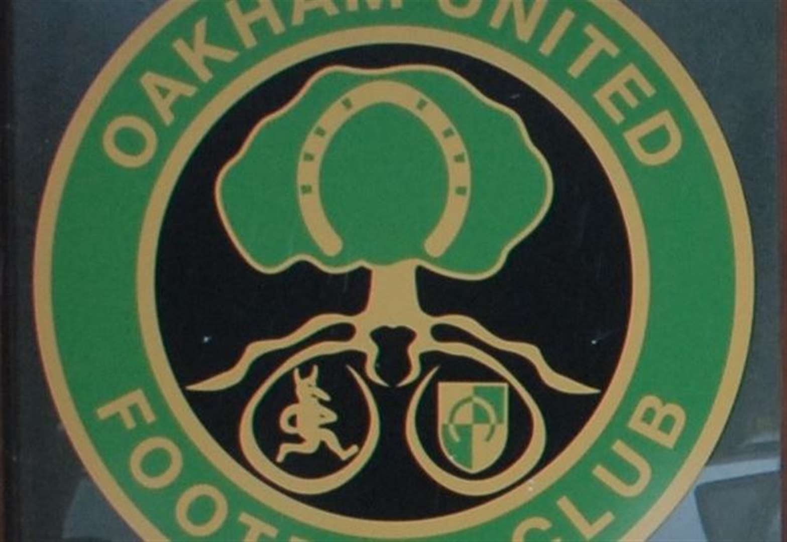 Archer adds another string to his bow after taking over Oakham United helm