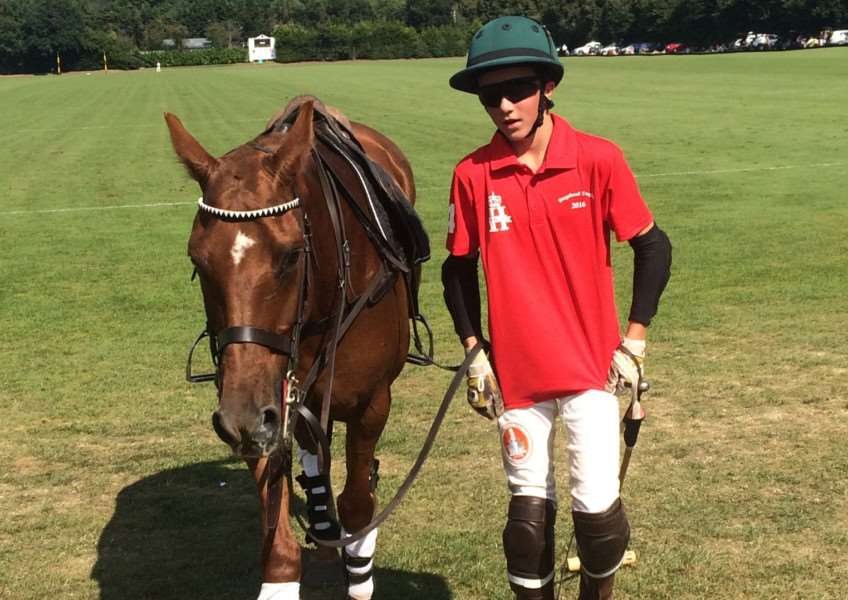 Marcus is hoping to produce his own polo ponies as a more cost effective alternative to buying in ready trained horses EMN-161124-140123002