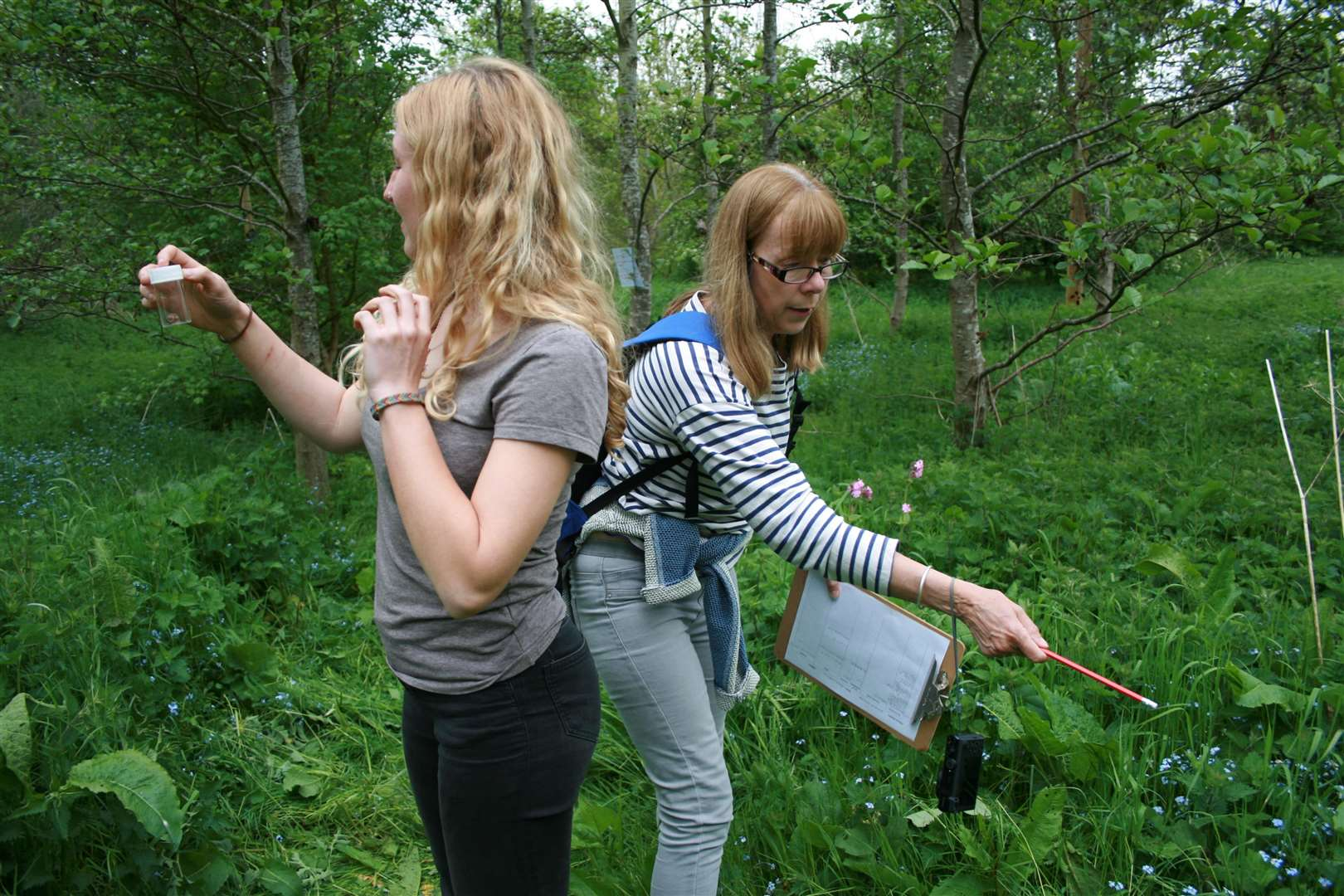 A Bioblitz on a parcel of land near Rutland recorded more than 250 species